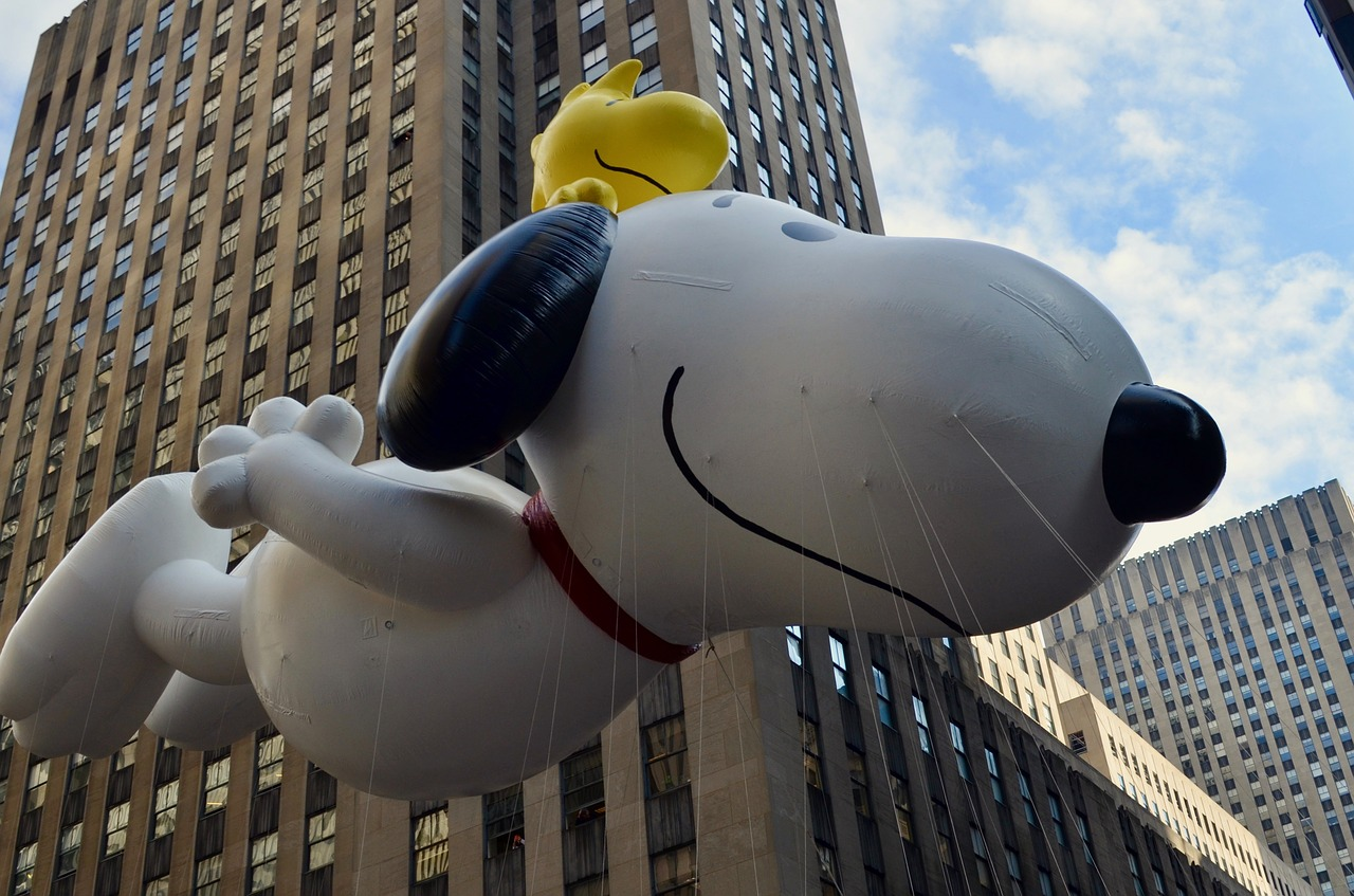 MetLife Final Expense Insurance Reviews Snoopy Picture